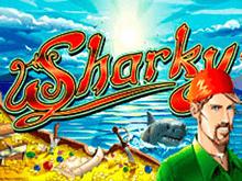Клуб Вулкан предлагает играть онлайн в автомат Sharky