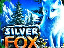 Играть на деньги в автомат Silver Fox онлайн
