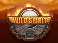 Игровой аппарат Wild Spirit